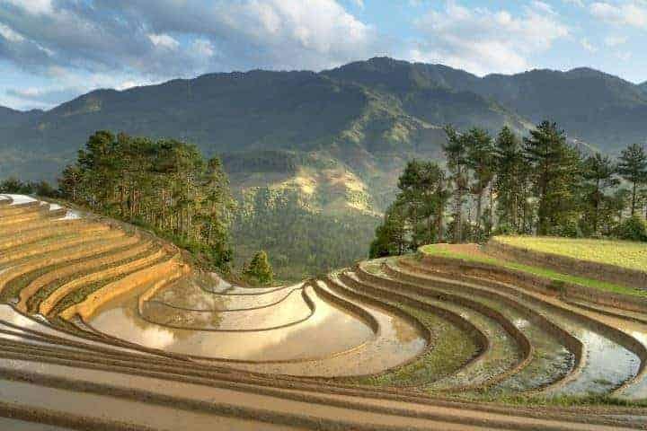 Vietnam'ın Doğal Kaynakları 1