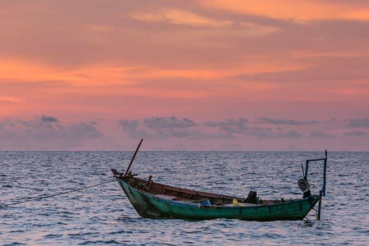 Vietnamın doğal kaynakları