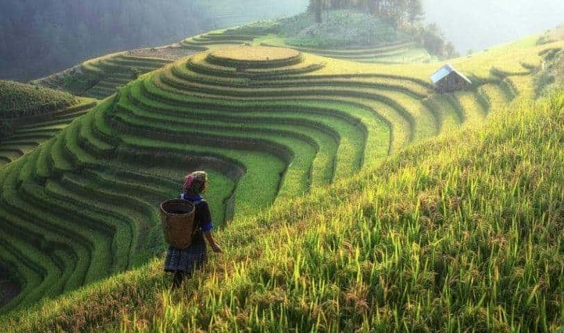 Vietnam Vizesi Nasıl Alınır ? vİETNAM HAKKINDA HERŞEY BURADA!